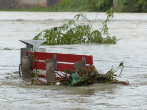 Baton Rouge, LA – Pickup Truck Driver Dies during Rescue Attempt after Flood